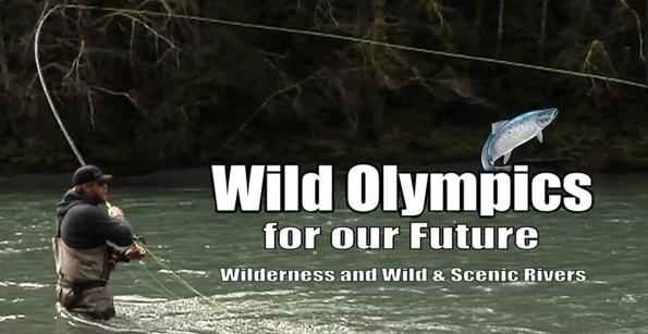 Wild Olympics 3